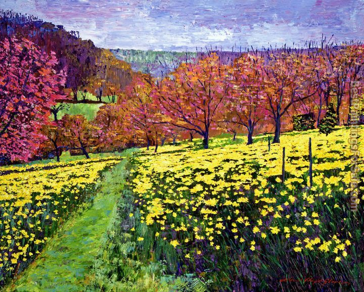 David Lloyd Glover Fields of Golden Daffodils